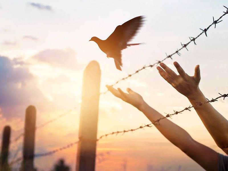 Auf den Spuren der Weltkriege in der Grossregion