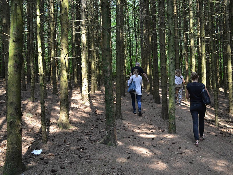 Themed trails - Shumannseck