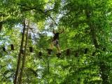 Ardenne Aventures - La Roche-en-Ardenne - Parcours accrobranche